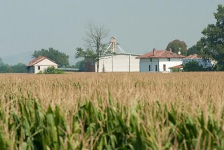 AZIENDA AGRICOLA MIGNONE – TENUTA S.MICHELE Bosco Marengo (Al)